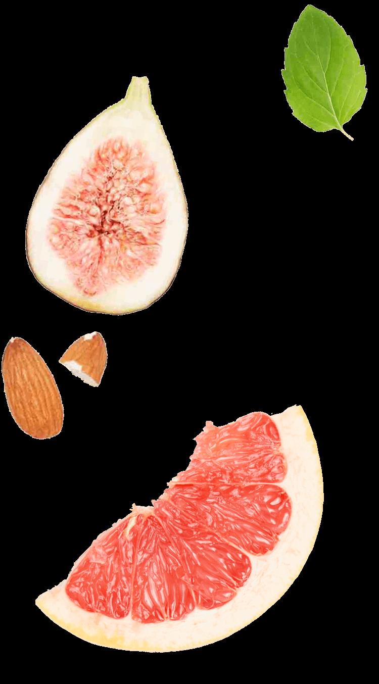 fruits_03
